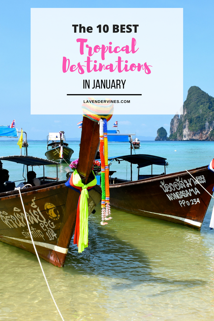 The 10 best tropical destinations to visit in january for Where to vacation in january