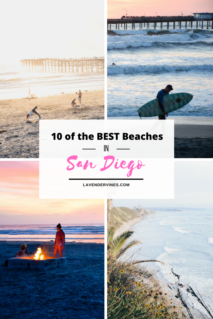 10 of the Best Beaches in San Diego
