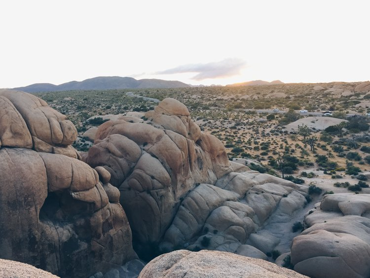 Jumbo Rocks - Joshua Tree National Park