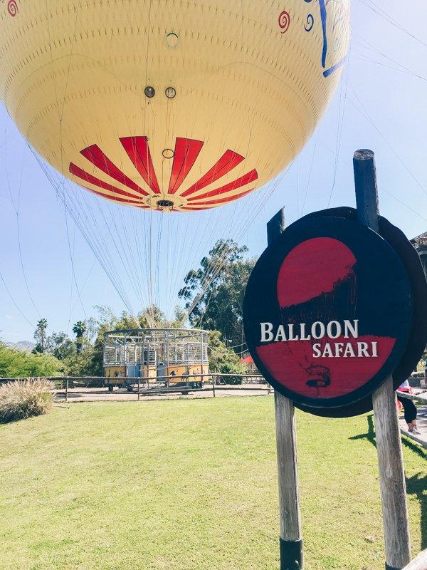 Balloon Safari - San Diego Zoo Safari Park