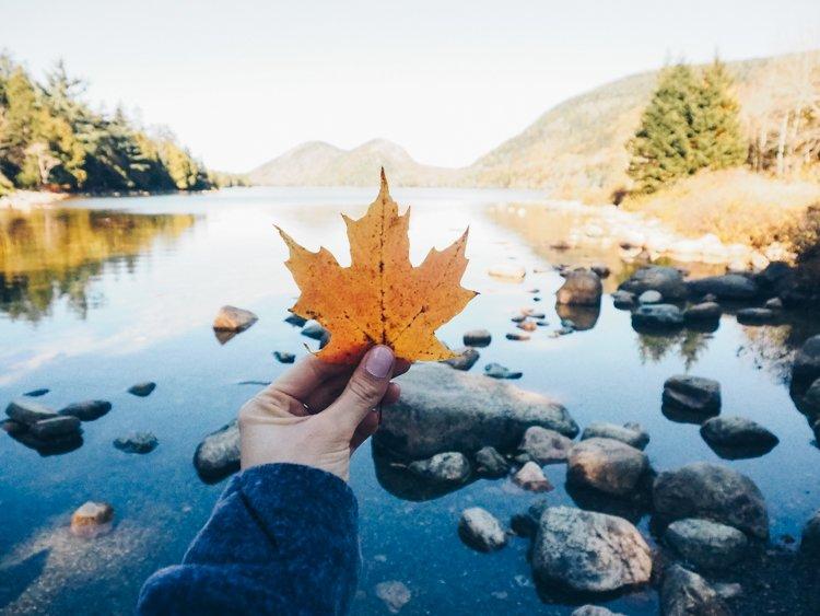 Jordon Pond - Guide Acadia National Park