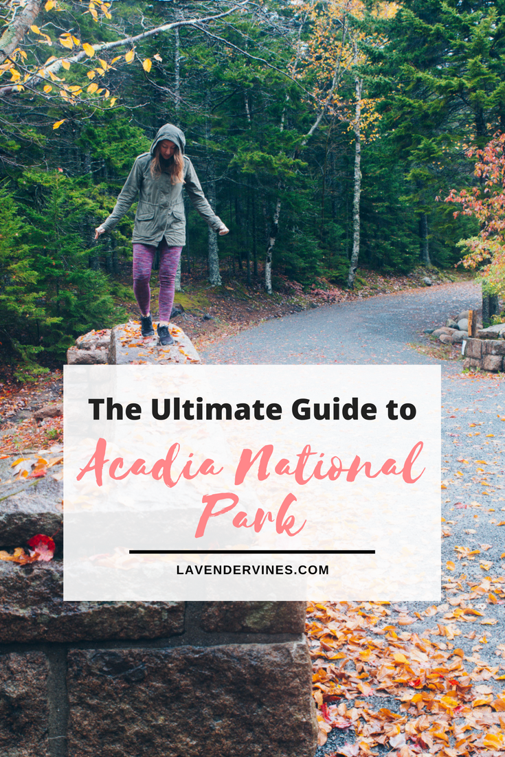 The Ultimate Guide to Acadia National Park
