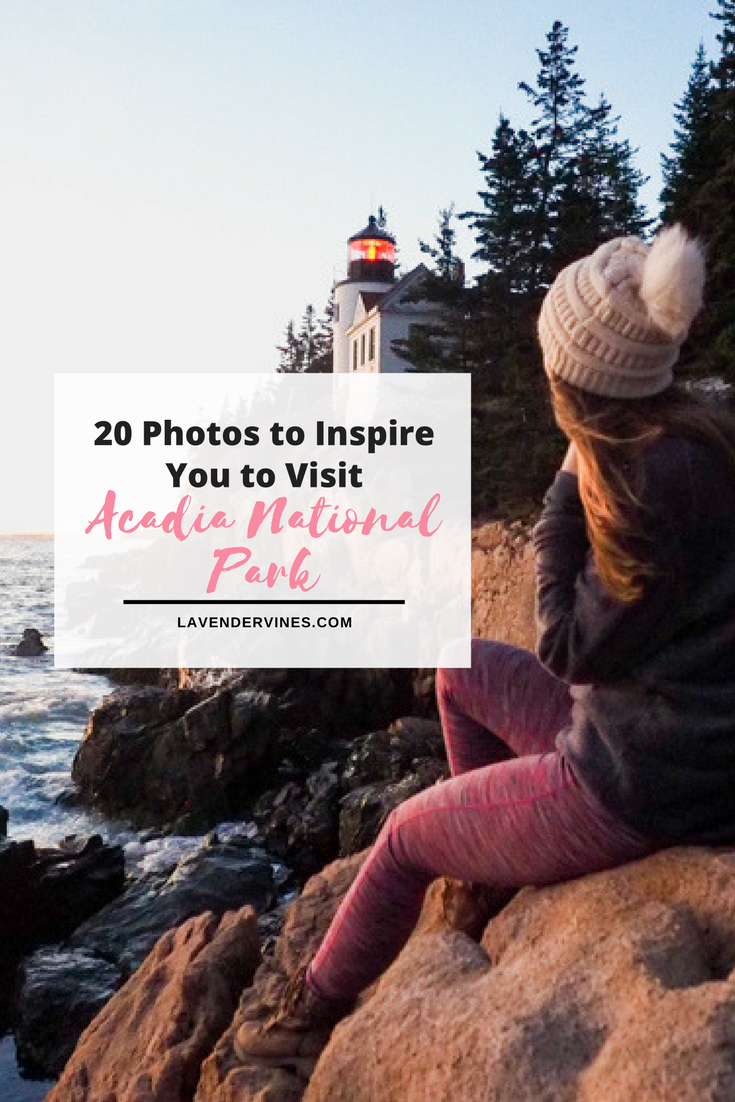 Photos to inspire you to visit Acadia National Park