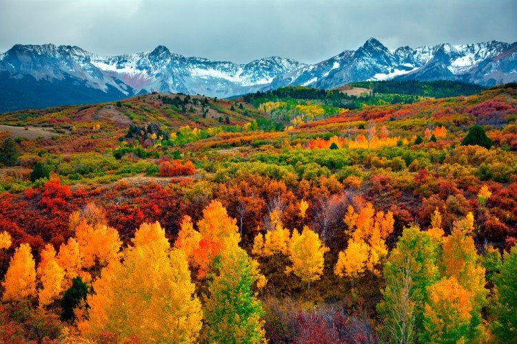 Best Places to Visit in the Fall - Denver, Colorado
