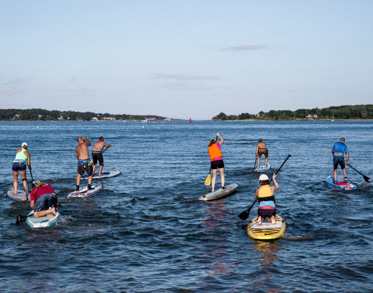 Portland Maine tours - Portland Paddle Board Tour