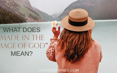 """What Does """"Made in the Image of God"""" Mean? – Genesis 1:27 Meaning"""