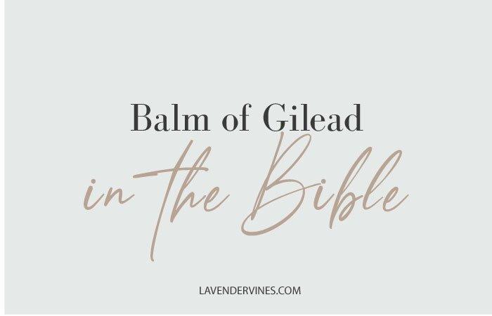 Balm of Gilead Bible