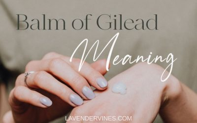 What Does the Balm of Gilead Mean According to the Bible?