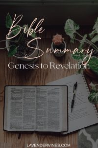 Bible Summary: A Summary of the Whole Bible from Genesis to Revelation